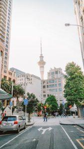 Auckland Skytower Food Travel
