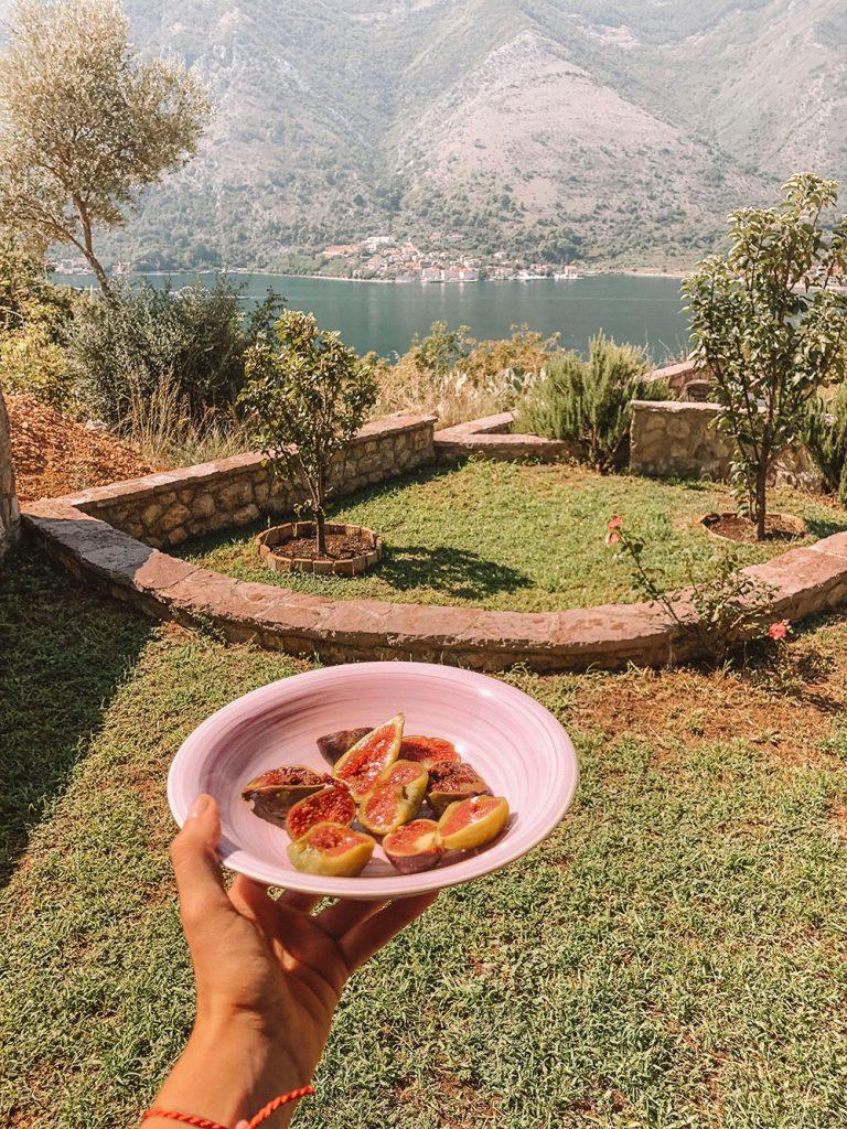 Kotor Bay Montenegro view